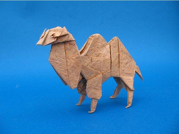 origami cammello
