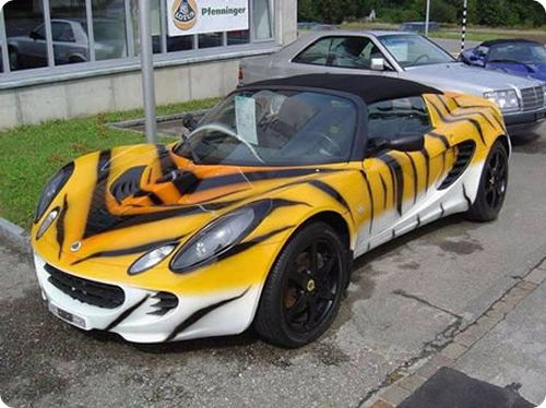 macchina tigre