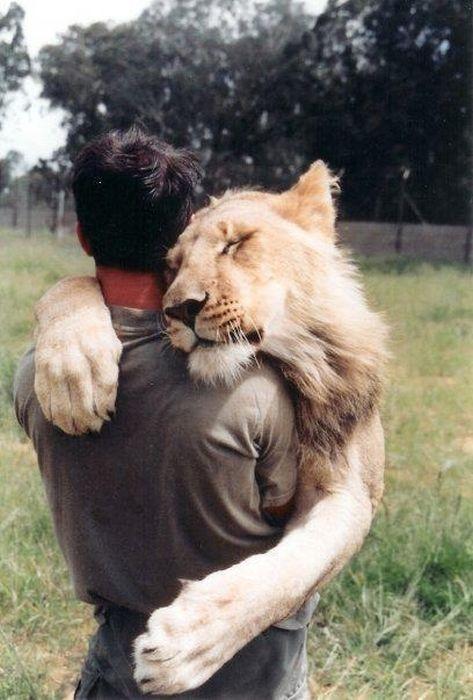 abbraccio-leone-uomo