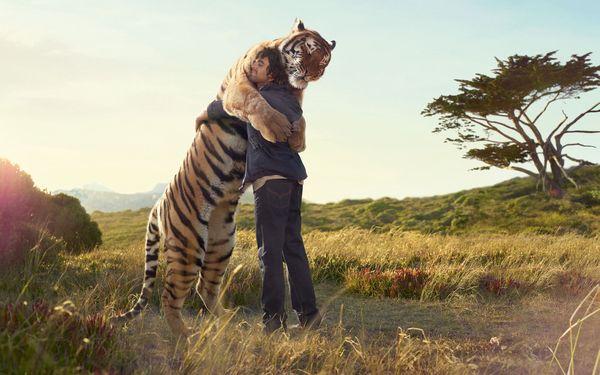 Hug Day: Top 10 degli abbracci tra animali